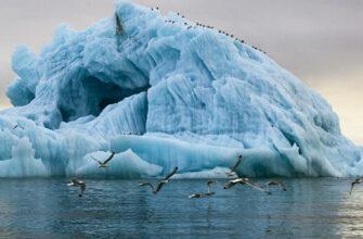 Эксперт: У этнотуризма в Арктике большой потенциал