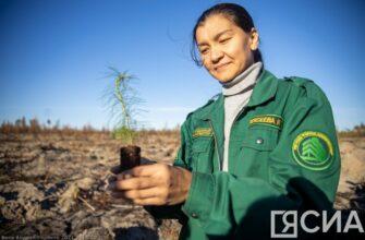 Премьер Якутии поздравил работников леса с профессиональным праздником