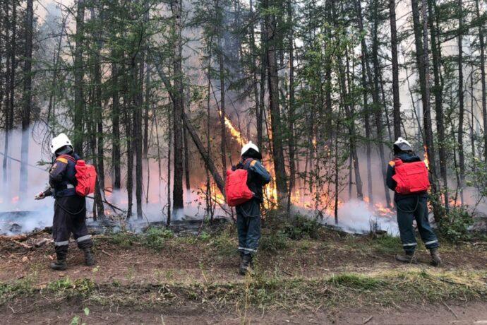 За сутки новых природных пожаров в Якутии не зарегистрировано