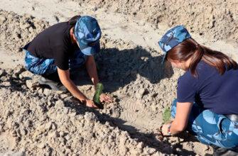 Сотрудники УФСИН Якутии приняли участие в экологическом субботнике «Зеленая Россия»