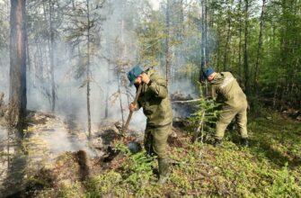 Угрожающих населенным пунктам Якутии природных пожаров нет