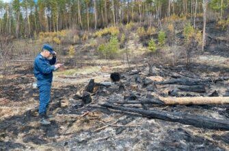 За сутки в Якутии ликвидировали 6 природных пожаров