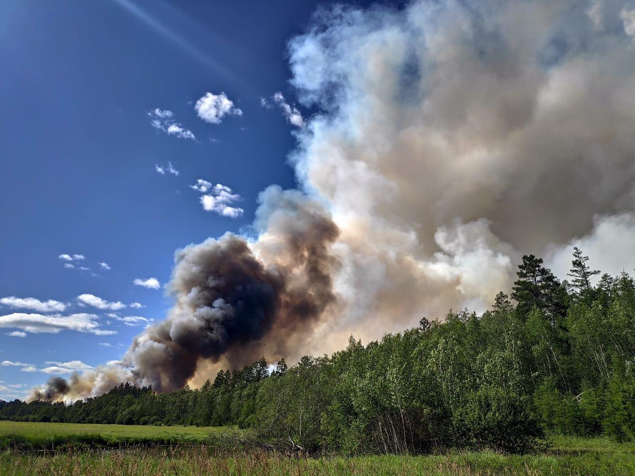 В тушении лесных пожаров в Якутии задействовано 713 человек и 52 единицы техники