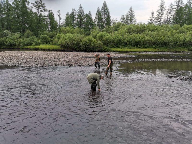 В Нерюнгринском районе вновь загрязнили реку Чульман