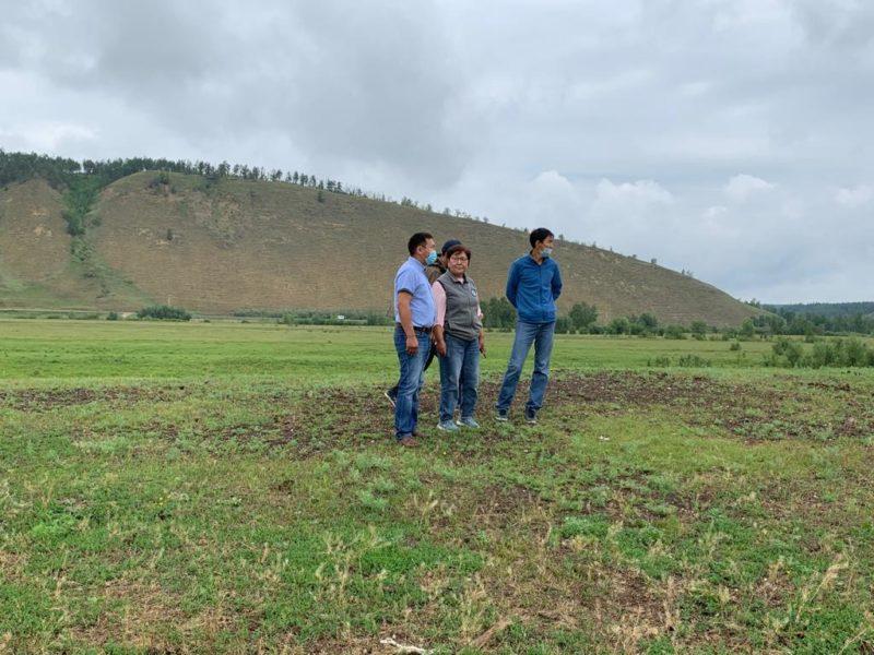 В Хангаласском районе сельскохозяйственный кооператив «Хахсык» работает на передовой