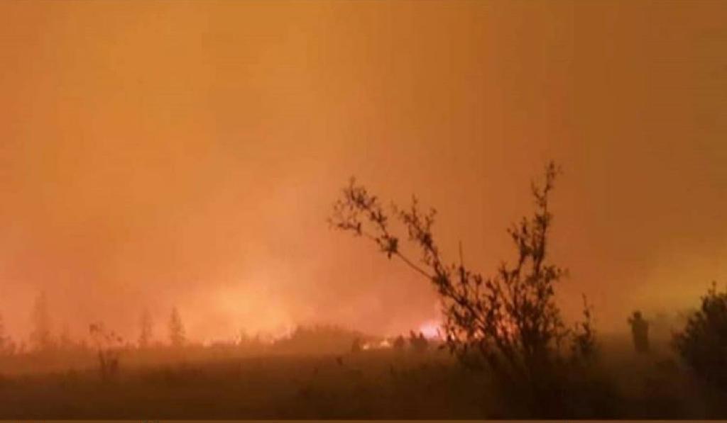 Лесной пожар отошел от села Сватай на один километр