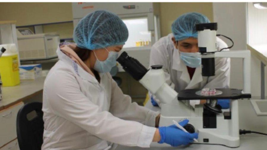 Учёные отчитались о промежуточных итогах исследований экологии Вилюйской группы улусов