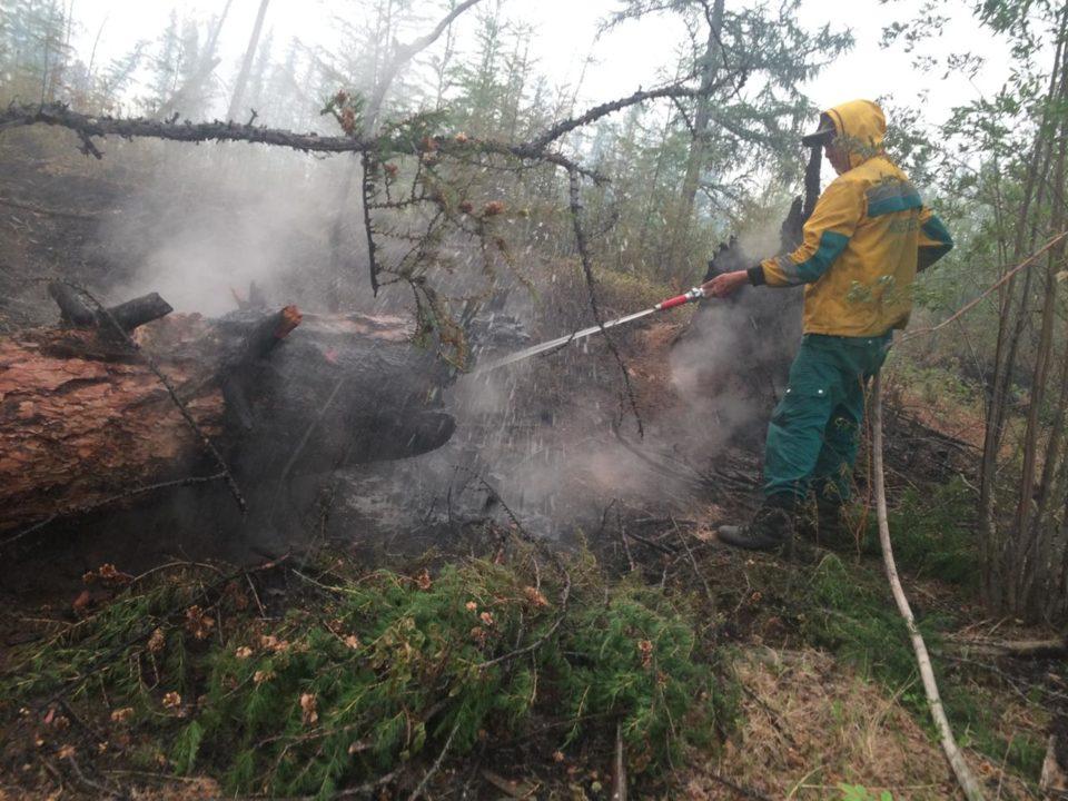 Лесные пожары на площади более 1 тысячи га тушат в Якутии