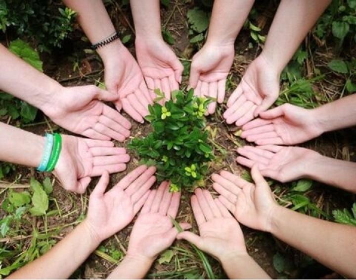 Грантовый конкурс в сфере экологического волонтерства пройдет в Якутии
