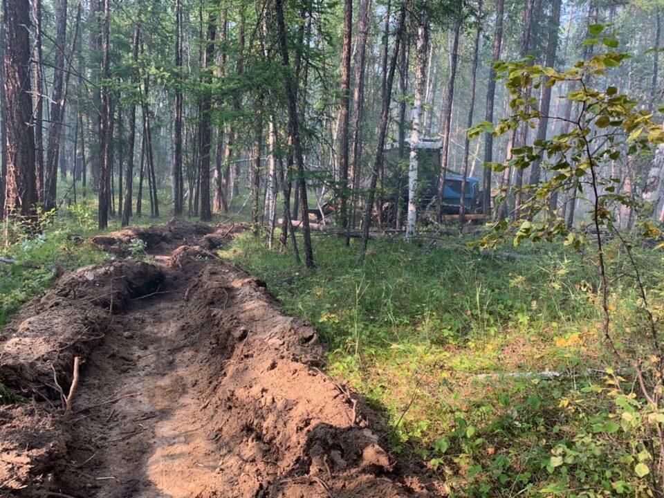 Дмитрий Садовников: За сутки ликвидировано 45 пожаров, локализовано 16