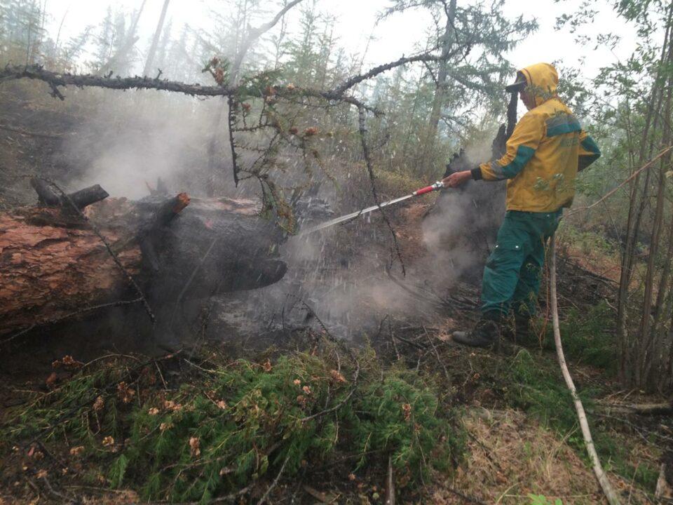 В Якутии планируют стабилизировать ситуацию с лесными пожарами в середине августа