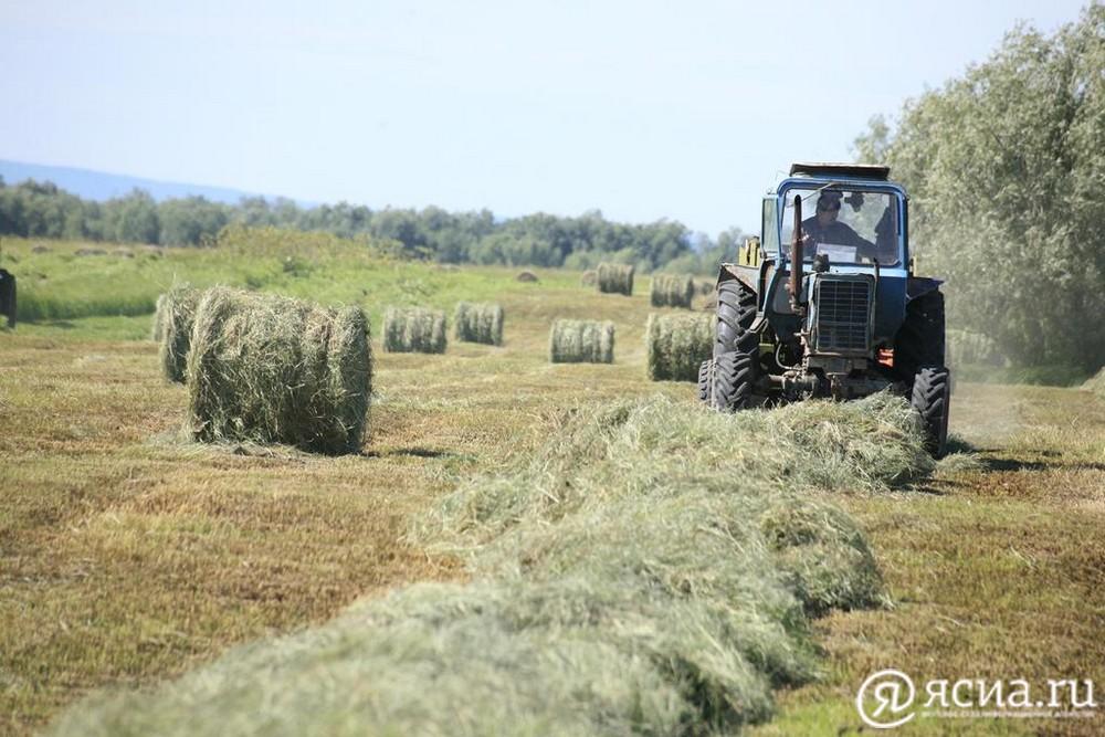 В Жиганском улусе Якутии к 25 августа выполнят план по заготовке сена