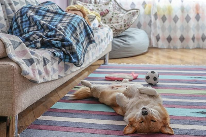 Врач рассказала, как спать в жару без кондиционера